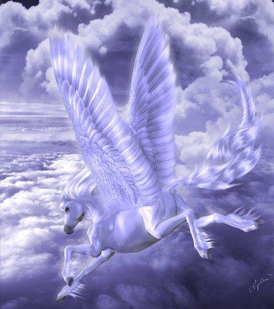 http://e3.img.v4.skyrock.net/4755/58774755/pics/3049892817_1_3_WECeWo0w.jpg